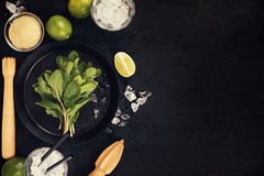 Mojito cocktail ingredients Royalty Free Stock Photos