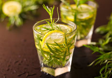 Mojito-Cocktail mit frischem Estragon Lizenzfreies Stockbild