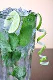 Mojito Cocktail mit tadellosem leav lizenzfreies stockbild