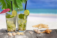 Mojito Cocktail under Palm Leaves Stock Photography