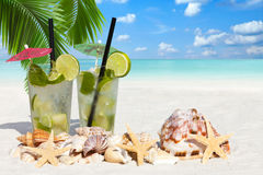 Mojito Cocktail under Palm Leaves Stock Photos