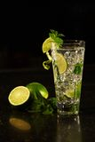 Mojito-Cocktailalkohol Lizenzfreie Stockbilder