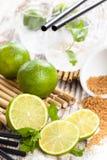 Mojito-Cocktailbestandteile lizenzfreie stockfotografie