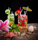 Mojito cocktails Royalty Free Stock Photos
