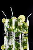 Mojito cocktails Royalty Free Stock Image