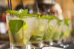 Mojito cocktails in a row on the bar ready to serve stock image