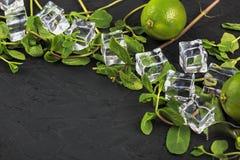 Mojito coctailar kopierar tequila f?r sodavatten f?r rom f?r is f?r utrymmemintkaramelllimefrukt fotografering för bildbyråer