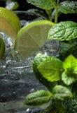 Mojito coctaildrink med limefrukt, is och mintkaramellen royaltyfri bild