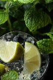 Mojito coctaildrink med limefrukt, is och mintkaramellen royaltyfria bilder