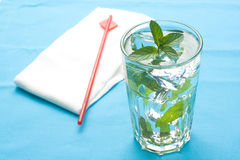 Mojito cool cuban cocktail ice lime mint Royalty Free Stock Photos