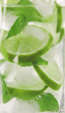 Mojito drink Royalty Free Stock Photos