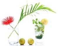 Mojito drink stock photos