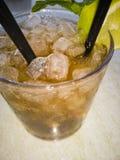 Mojito drink i ett exponeringsglas royaltyfri fotografi