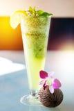 Mojito drink i högt exponeringsglas i solljus Royaltyfria Bilder