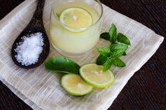 Mojito e ingredientes Foto de Stock
