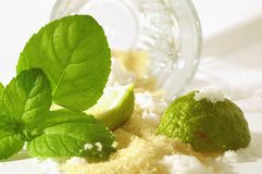 Mojito ingredients. A scenario where all the Mojito ingredients are messed up on a table Royalty Free Stock Photo
