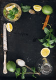 Mojito ingredients frame Royalty Free Stock Image