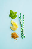 Mojito ingredients. Lemon, mint and cane sugar. stock photography