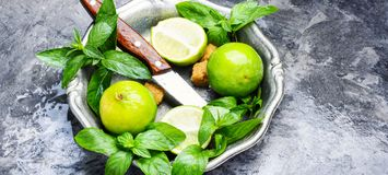 Fresh green mint and lime Stock Image