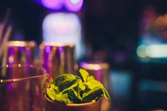 Mojito ingredients on rustic wooden table against the background of the bar. stock photos