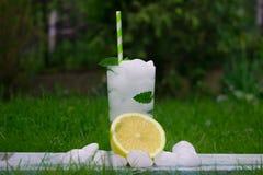 Mojito koktajl z lodem w parku zdjęcie stock