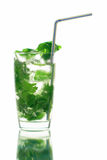 Mojito long drink. Close up with ice and coriander, white background Royalty Free Stock Photos