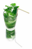 Mojito long drink close up. With ice and coriander, white background Stock Photos