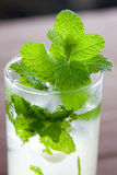 Mojito with mint close-up. #6. A glass of mojito cocktail with mint in the sunlight. #6 royalty free stock photos