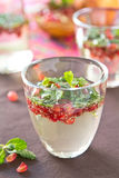 Mojito Pomegranate Stock Photos