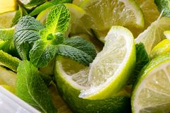 Mojito set with mint leaves and sliced lime macro shot Stock Photography