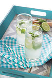 Mojito in tall glasses Royalty Free Stock Image