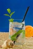 Mojito tropical de la playa Fotos de archivo libres de regalías