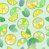 Mojito vector seamless pattern Royalty Free Stock Images