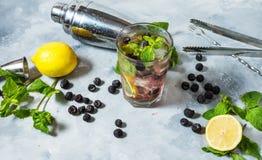 Mojitococktail met braambes en munt in highballglas op rustieke concrete achtergrond Stock Foto