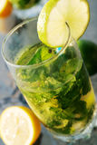 Mojitos Royalty Free Stock Photos
