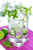 Mojitos Foto de Stock Royalty Free