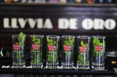 Mojitos w linii, słynny kubański koktajl Zdjęcie Stock
