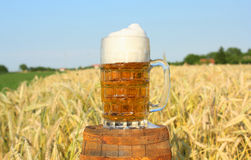 Mok bier Stock Afbeelding