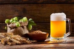 Mok bier met groene hop, tarweoren en korrels stock foto's