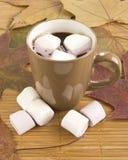 Mok hete chocolade met heemst tegen Stock Foto's