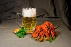 Mok met bier, gekookte rivierkreeften en greens royalty-vrije stock afbeeldingen