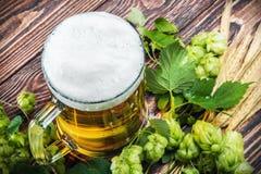 Mok met Bier met hop Stock Fotografie