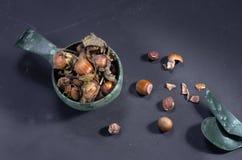Mok met hazelnoten Hazelnoten en schil Originele schotels bovenkant stock fotografie