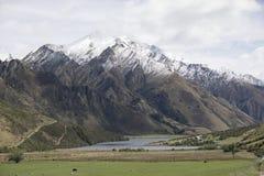 Moke See und Einfassungen, Queenstown, Neuseeland lizenzfreie stockfotos