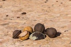 Moki marbles Stock Photos