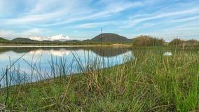 Mokolodi Nature Reserve Stock Images
