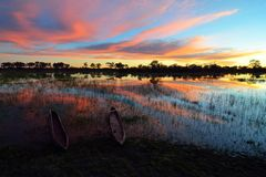 Mokoro στο δέλτα Okavango στο ηλιοβασίλεμα, Μποτσουάνα στοκ εικόνα