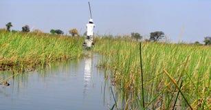 Mokoro boat Stock Images