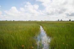 Mokoro Canoe Trip in the Okavango Delta near Maun, Botswana Royalty Free Stock Photos