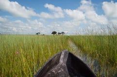 Mokoro Canoe Trip in the Okavango Delta near Maun, Botswana Stock Image